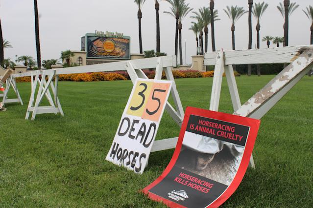 According to the state horse racing board, this season's 29 deaths are down from a year ago, when 37 racing and training deaths occurred at Santa Anita in 2018, and 54 in 2017.
