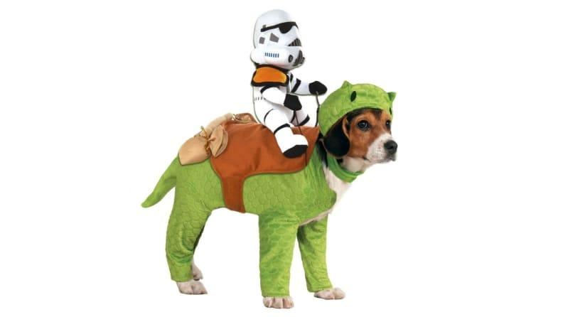 If your dog is small but sturdy, she'll have no problem embodying a dewback.