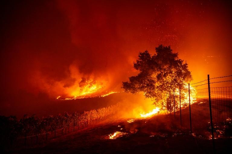 Greenhouse gas emissions are once again set to rise, leading to extreme weather events such as California's wildfires (AFP Photo/Josh Edelson)