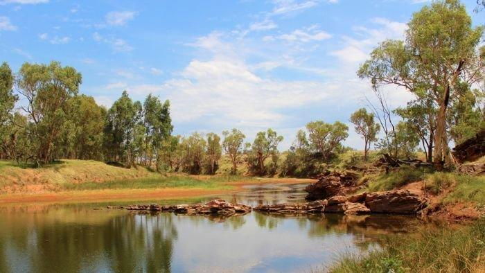 Red Centre carbon farming blueprint on hold