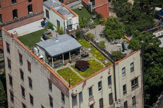 Apartment Building Roof idyllic country cottage on the roof of an nyc building is every
