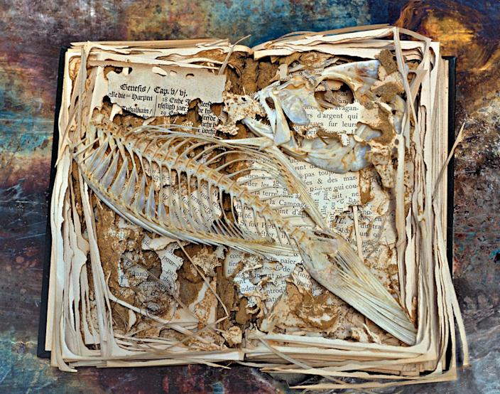 <p>Termite eaten book, Museum of Comparative Zoology, Harvard University. with fish added. (Photograph by Rosamond Purcell/Courtesy of BOND/360) </p>