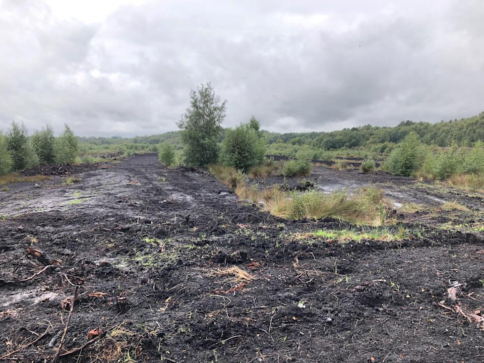 Peat stores carbon and provides habitat but loses those functions if it is damaged (Emily Beament/PA)