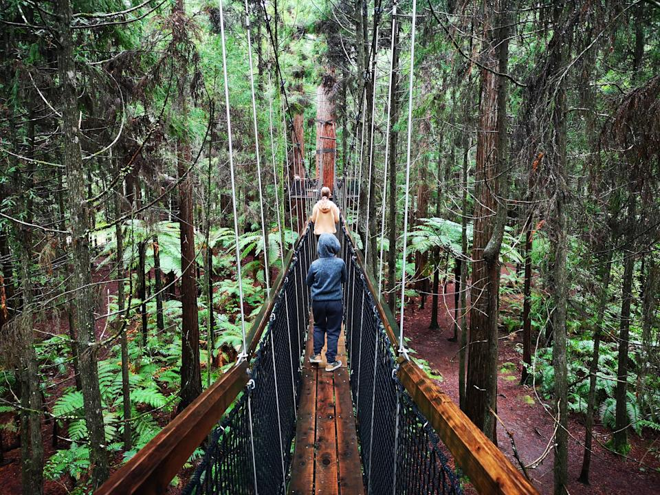 Pictured are two people walking across a footbridge in a Rotorua forest.