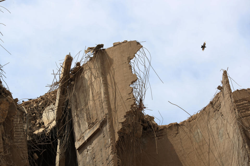 A bird flies over the devastated site of the explosion in the port of Beirut, Lebanon, Thursday Aug.6, 2020. French President Emmanuel Macron came in Beirut to offer French support to Lebanon after the deadly port blast.(AP Photo/Thibault Camus, Pool)