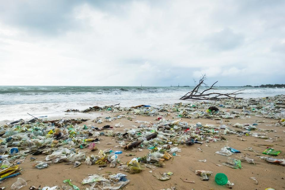 Zero Co's reusable containers will be made from plastics pulled from the ocean in Indonesia. Pictured is a beach in Bali littered with plastics.