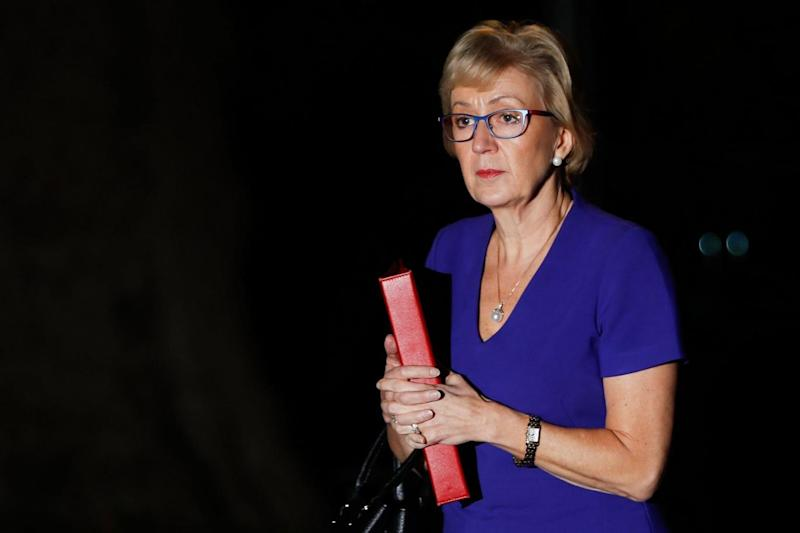 Leader of the House of Commons Andrea Leadsom arrives at No10 to be briefed on the Brexit deal (AFP/Getty Images)