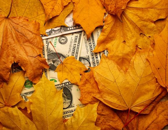 A stack of dollar bills partially covered by autumn leaves