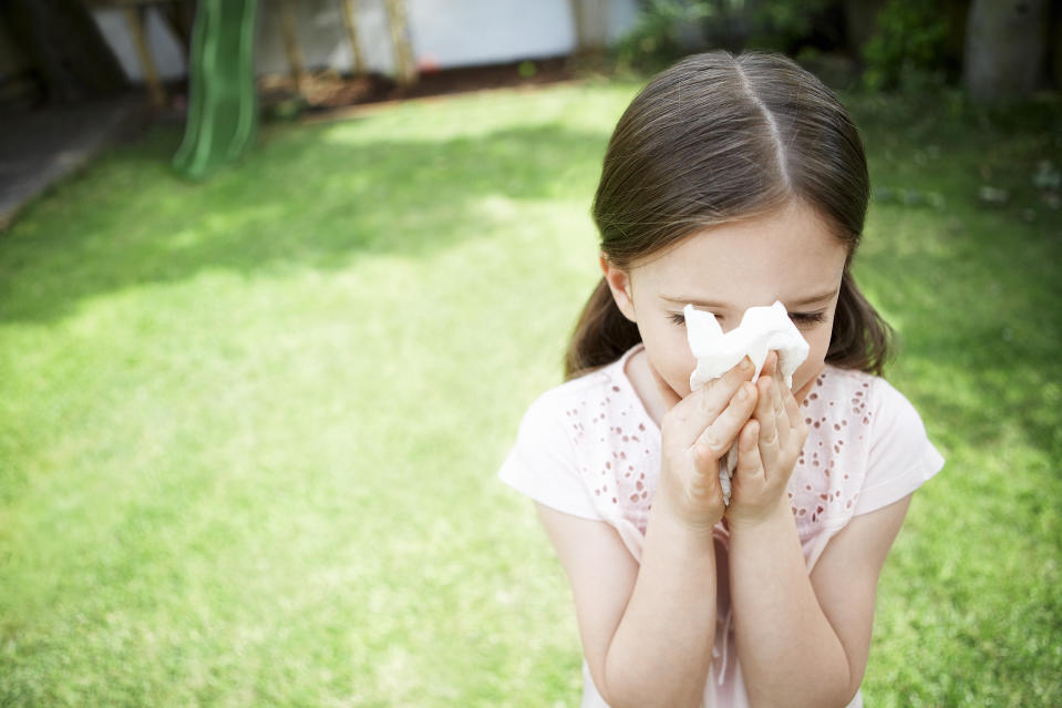 A young girl sneezing on grass, a major symptom and trigger of hay fever.