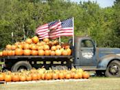 """<p>Between their corn canons, pig races, corn mazes, pedal carts, barnyard animal area, and 15 more outdoor attractions, there's so much to squeeze in after your pumpkin picking adventure at <a href=""""https://www.southernbellefarm.com/"""" rel=""""nofollow noopener"""" target=""""_blank"""" data-ylk=""""slk:Southern Belle Farm"""" class=""""link rapid-noclick-resp"""">Southern Belle Farm</a> in <a href=""""https://go.redirectingat.com?id=74968X1596630&url=https%3A%2F%2Fwww.tripadvisor.com%2FTourism-g35102-McDonough_Georgia-Vacations.html&sref=https%3A%2F%2Fwww.countryliving.com%2Flife%2Ftravel%2Fg21273436%2Fpumpkin-farms-near-me%2F"""" rel=""""nofollow noopener"""" target=""""_blank"""" data-ylk=""""slk:McDonough, Georgia"""" class=""""link rapid-noclick-resp"""">McDonough, Georgia</a>. Pack some extra snacks to keep your energy up or check out their country market for seasonal treats to munch on.</p><p><a class=""""link rapid-noclick-resp"""" href=""""https://go.redirectingat.com?id=74968X1596630&url=https%3A%2F%2Fwww.tripadvisor.com%2FAttractions-g35102-Activities-McDonough_Georgia.html&sref=https%3A%2F%2Fwww.countryliving.com%2Flife%2Ftravel%2Fg21273436%2Fpumpkin-farms-near-me%2F"""" rel=""""nofollow noopener"""" target=""""_blank"""" data-ylk=""""slk:PLAN YOUR TRIP"""">PLAN YOUR TRIP</a><br></p>"""