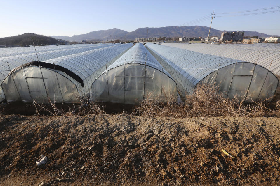 This photo shows rows of greenhouses at a farm in Pocheon, South Korea on Feb. 8, 2021. Amid a sea of greenhouses near South Korea's ultra-modern capital, hundreds of migrant workers from across Asia toil in silence, isolated and unprotected by labor laws. (AP Photo/Ahn Young-joon)