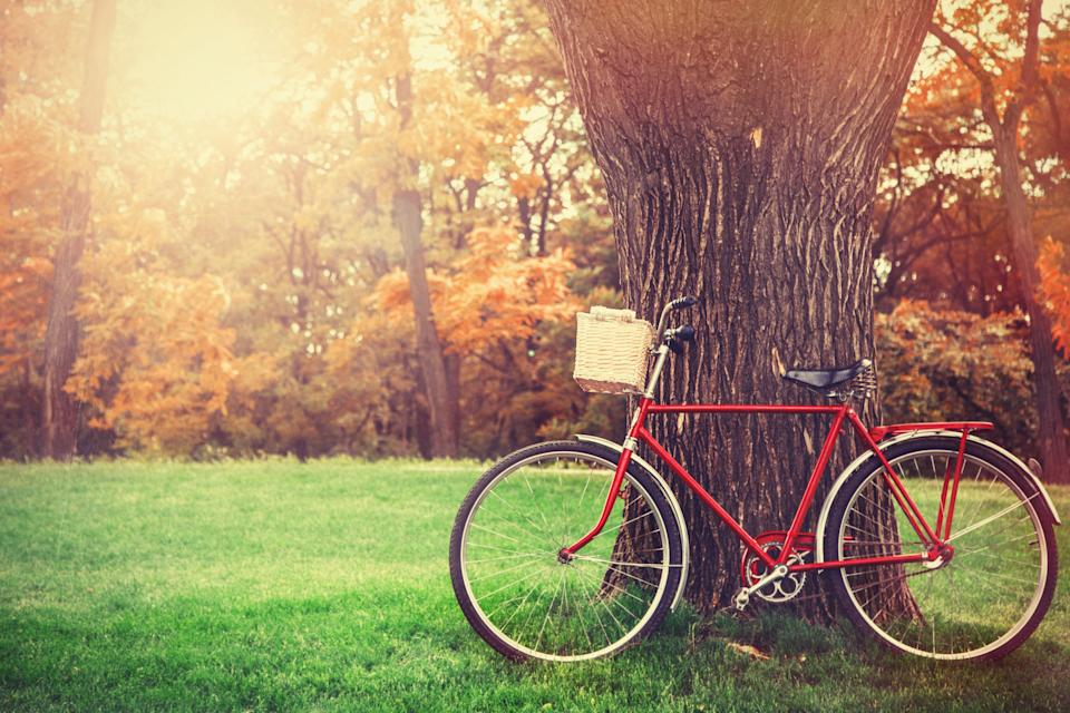 Vintage bicycle waiting near tree (Photo: Massonstock via Getty Images)