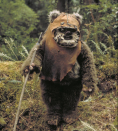 <p>This furry little Ewok joined the rebels for the Battle of Endor in <em>Return of the Jedi</em>. </p>