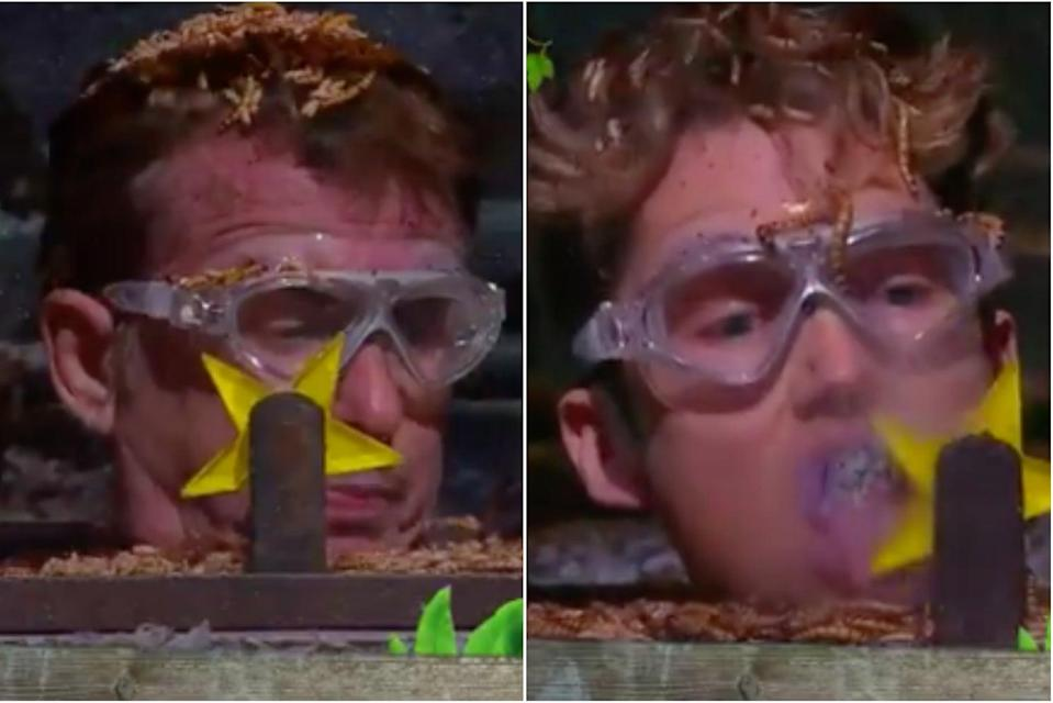 <p>Shane and AJ kept their cool during the stomach-churning challenge</p> (ITV/I'm a Celebrity... Get Me Out of Here!)