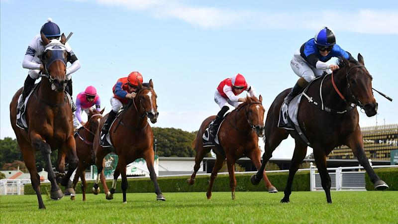 RACING GOSFORD CUP RACE DAY