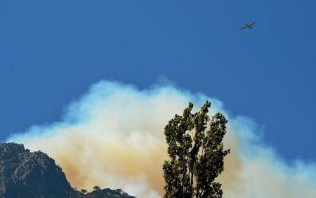 """A plane flies over smoke while an area of natural reserve of """"China Muerta"""" (Chinese Dead) burns during a wildfire inside Conguillio National Park in Temuco, March 21, 2015. REUTERS/Hector Andrade"""