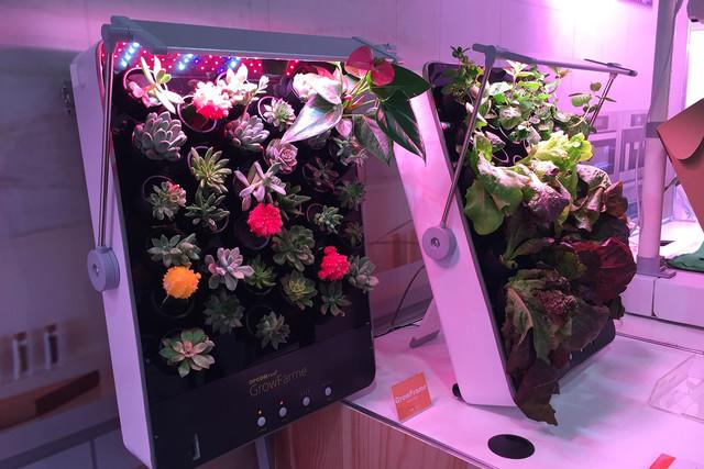 smart indoor garden opcomlink ces growframe