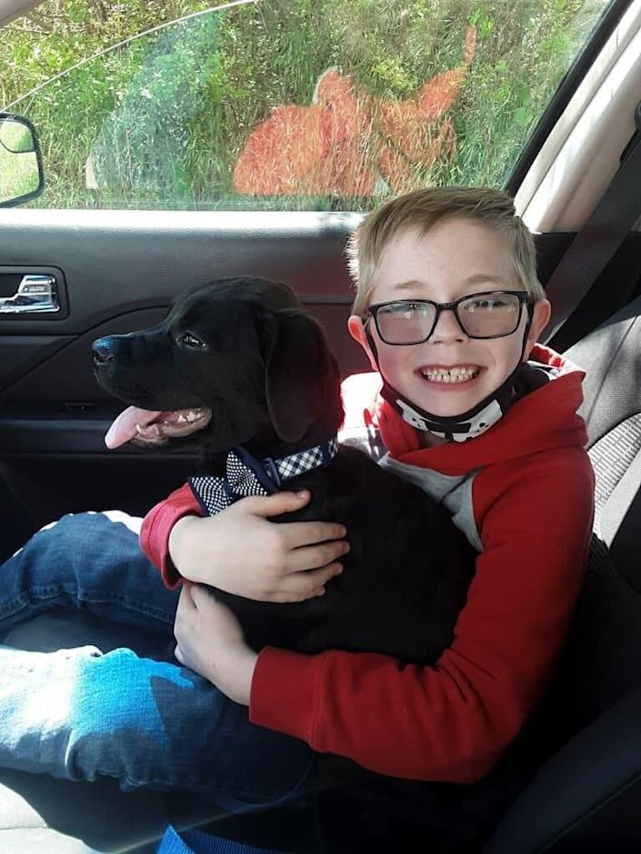 This boy loves his Pokémon cards.  But he sold them to save his dog's life, and donations are pouring in.