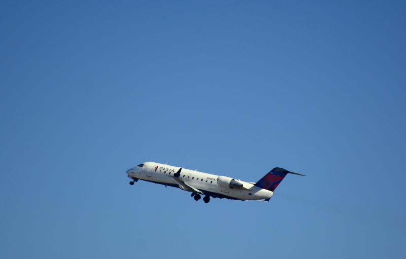 Delta Mistakenly Flies Puppy Bound for Boise to Detroit, Las Vegas and Salt Lake City Instead