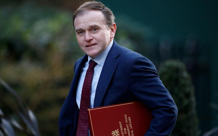 The proposal represents a victory for George Eustice, the Environment Secretary - Henry Nicholls/Reuters