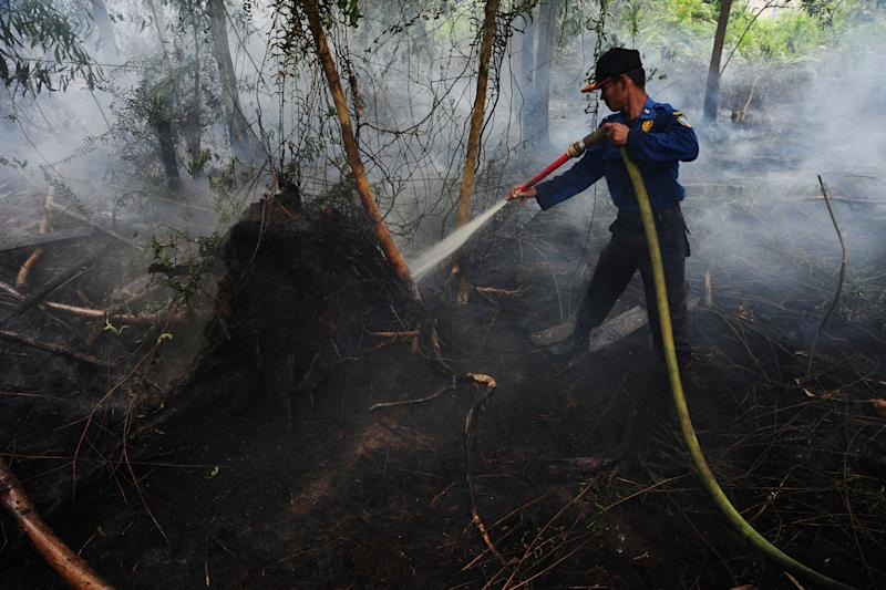 A Pontianak city fire fighter sprays water on a peat land fire on the outsikirts of Pontianak, West Kalimantan, Indonesia 22 August, 2016. (Antara Foto via Reuters file photo)