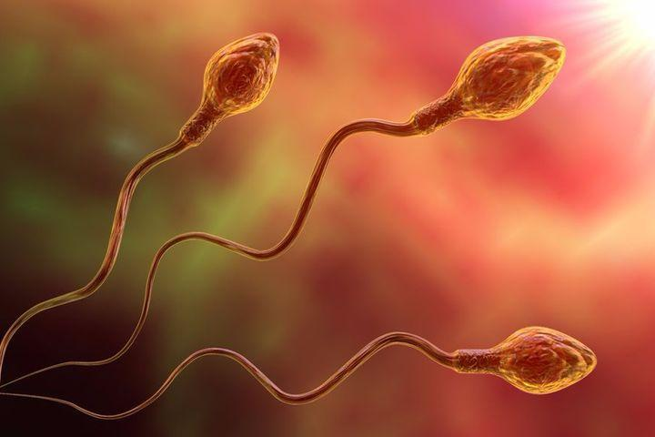 <i>It takes three months for sperm to be completely eliminated [Photo: Getty]</i>