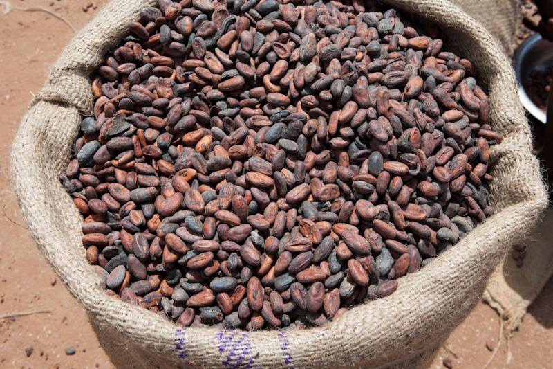 """Ghana is the second-largest producer of cocoa in the world, so the <a href=""""https://visitghana.com/cocoa-ecotourism-initiative-launched-to-promote-ghanas-cocoa-as-a-tourism-product/"""" target=""""_blank"""" rel=""""noopener noreferrer"""">Ghana Tourism Authority</a> recently launched its Cocoa Ecotourism Initiative to promote cocoa farms as a tourist attraction. Indeed, travelers can take <a href=""""https://www.lonelyplanet.com/ghana/accra/activities/cocoa-trail/a/pa-act/v-66673P2/355309"""" target=""""_blank"""" rel=""""noopener noreferrer"""">tours to learn about the history</a> and current practice of cocoa production in the country."""