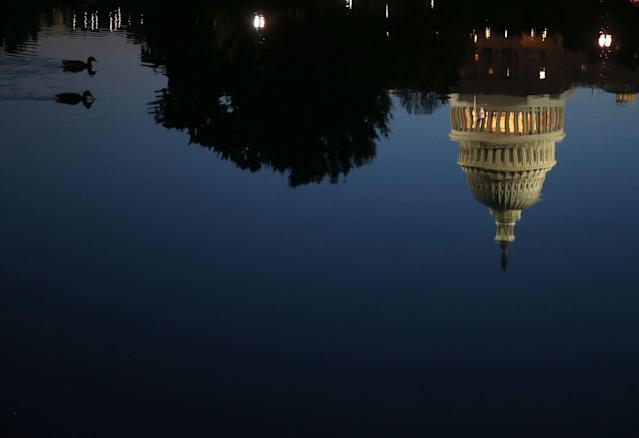 The U.S. Capitol is reflected in water as two Ducks swim past, October 15, 2013 in Washington, DC. (Mark Wilson/Getty Images)