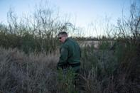 Derek Boyle, the agent in charge of the Border Patrol station in Presidio, Texas, walks through tall grass on the US-Mexico border (AFP Photo/Paul Ratje)