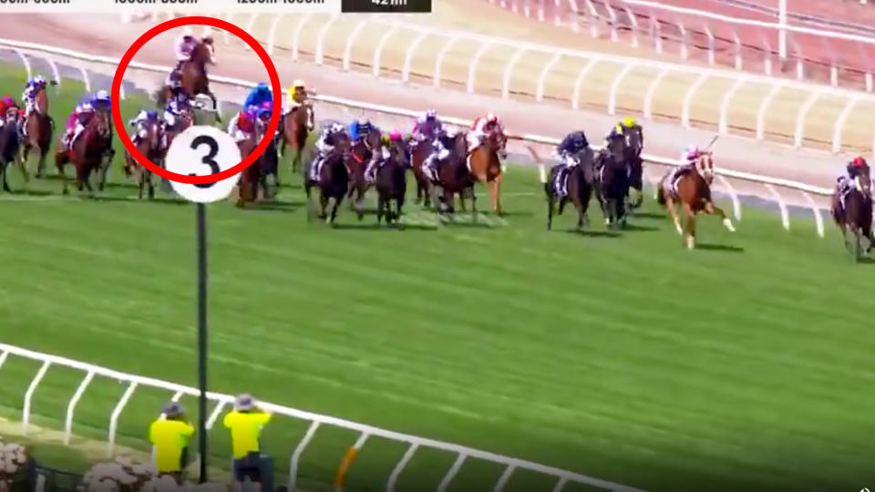 Racehorse Anthony Van Dyck is circled in the moment he is injured during the Melbourne Cup.