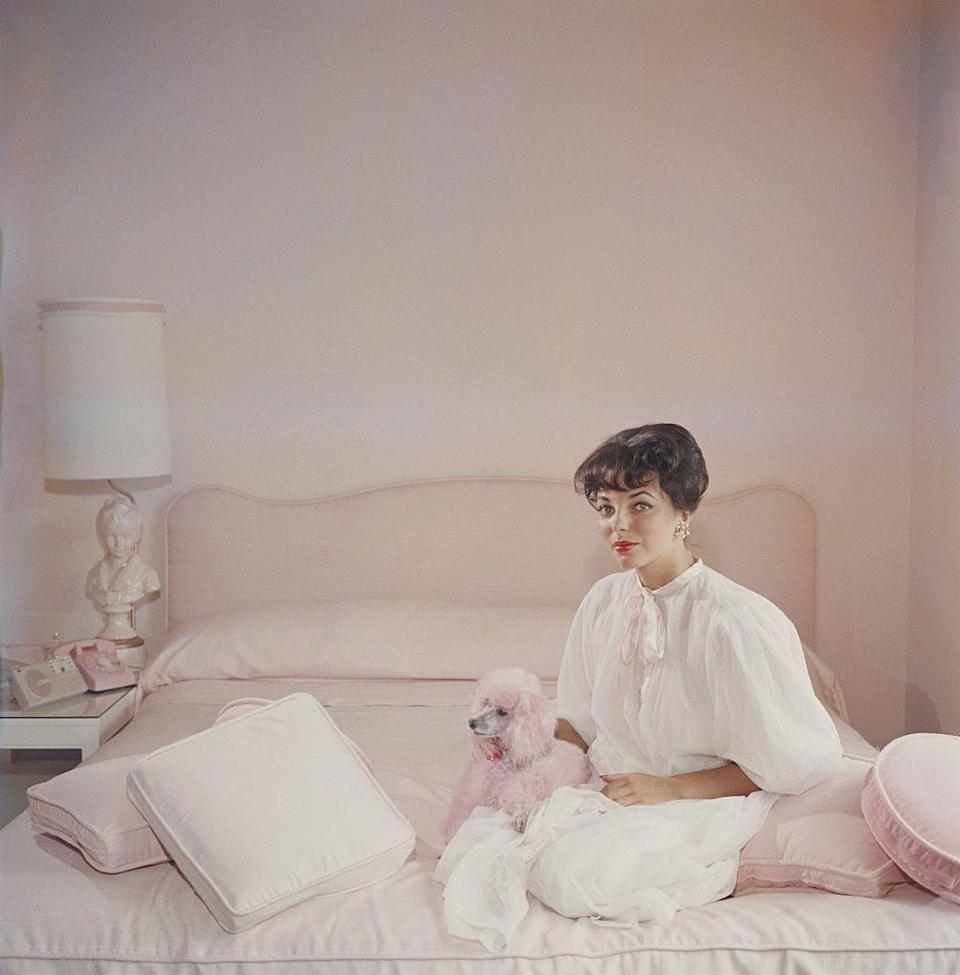 <p>Joan Collins is a vision in pink as she poses for a photograph in her pink bedroom with her pink poodle. </p>