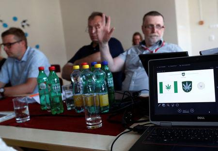 A design for Kanepi municipality's flag and coat of arms featuring a cannabis leaf is seen during the municipality council's vote in Polgaste
