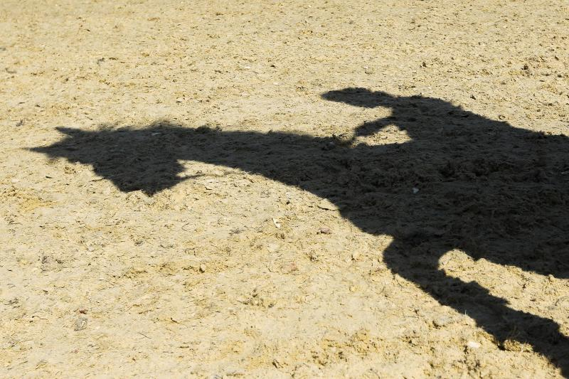 A horse and rider cast a shadow during a training session at Greenwich Park, the site for the equestrian and modern pentathlon events for the 2012 Summer Olympics, Wednesday, July 25, 2012, in London.The city will host the 2012 London Olympics with opening ceremonies scheduled for Friday, July 27. (AP Photo/Markus Schreiber)