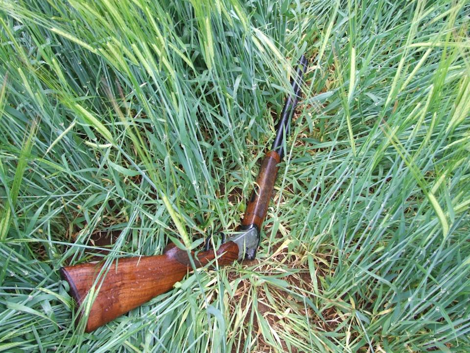 Library image: Sean Murphy claims he found the shotgun in a hedge.