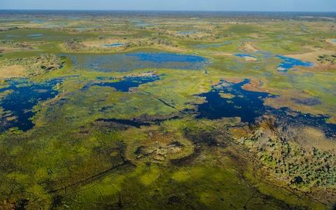The vast Okavango Delta is one of the Seven Natural Wonders of Africa - Credit: AP/FOTOLIA