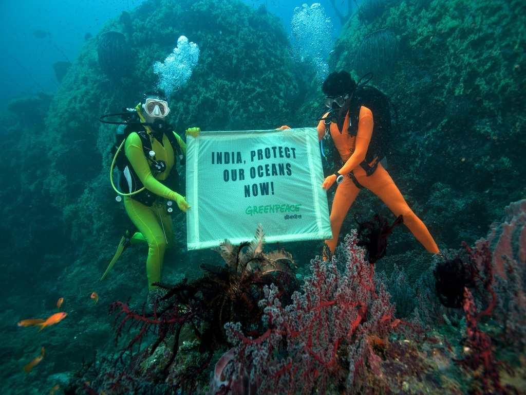 Greenpeace divers descended to a depth of 65 feet to unfurl their banner demanding that the Indian Government do more to protect India's marine biodiversity.