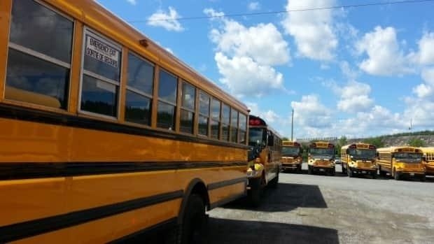 Schools remained open in Nova Scotia as the humidex made it feel like the high 30s in some parts of the province.  ( - image credit)