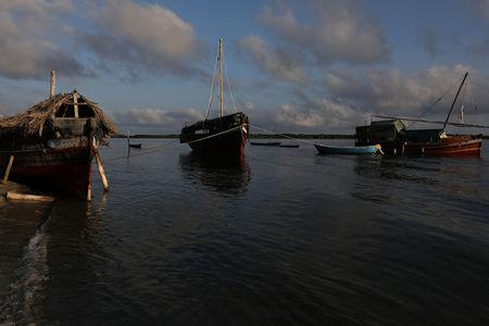 Traditional large dhows are anchored in a lagoon on the island of Lamu, Kenya, November 9, 2017. REUTERS/Siegfried Modola