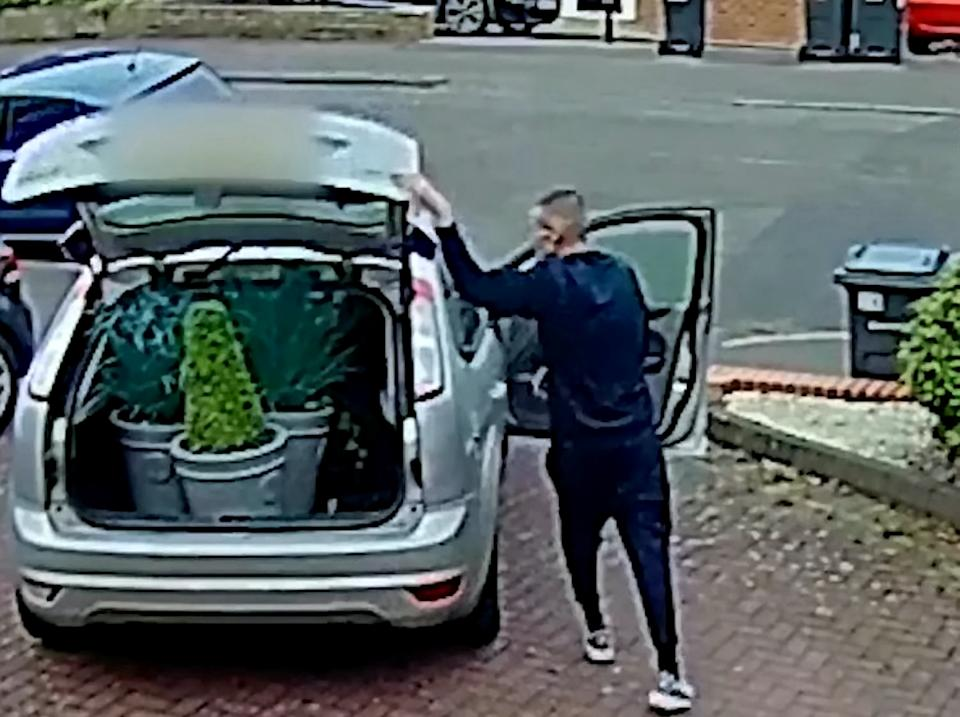 CCTV of a male stealing three plants from a drive in Harborne, Birmingham, before driving off in a silver Ford Focus.  See SWNS story SWMDplants.  Police  want to speak to him after three plant pots were stolen from a drive on Park Hill Road, shortly before 9pm on Sunday 26 July.  He left in a Ford Focus which is believed to be on false plates.