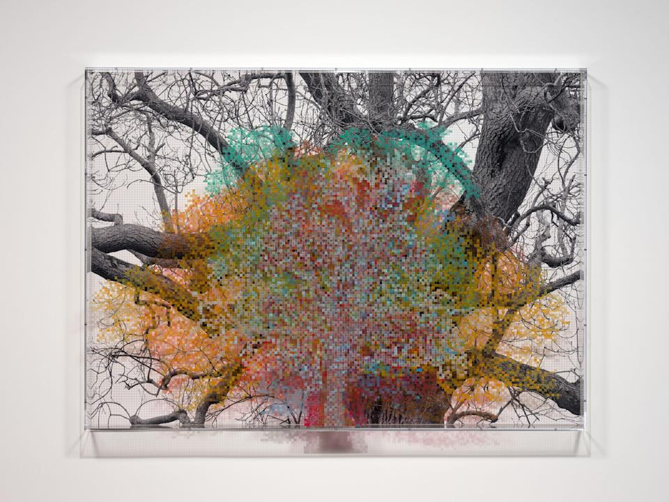 <p>Numbers and Trees: London Series 1, Tree #6, Fetter Lane, 2020 by Charles Gaines</p> (Charles Gaines)