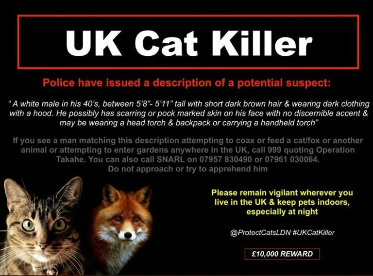 A poster released by police in south London describing a potential suspect in the case
