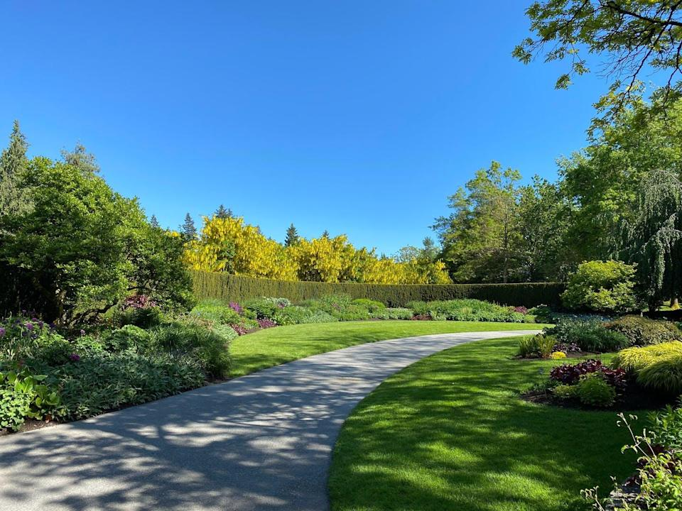 Lush park, cloudless blue sky with tall hedges, flowers, shrubs and perfectly manicured lawn