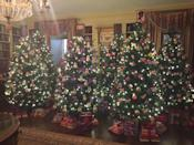 <p>In a room decorated by Carol Lim and Humberto Leon of Opening Ceremony and Kenzo, stacks of books replace presents under the tree and stars on top of the tree. <i>(Photo: Cassie Carothers)</i><br></p>
