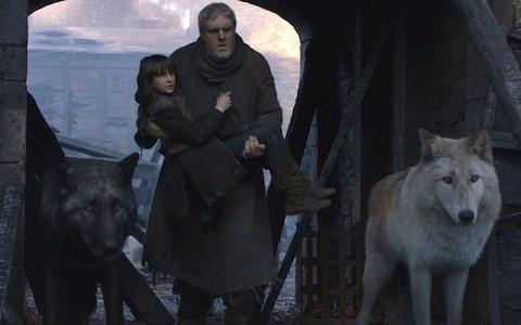 Bran's direwolf called Summer - Credit: HBO