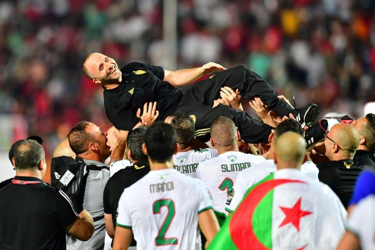 Algeria coach Djamel Belmadi is hoisted aloft by his players after leading the country to a second Africa Cup of Nations title (AFP Photo/Giuseppe CACACE)