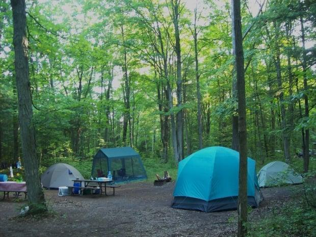 It seems camping will be popular this summer, given but a recent ad on Kijiji for a website called Camping Bot had people wondering if reservation bots have played a role in booking up Ontario Parks. (CBC - image credit)