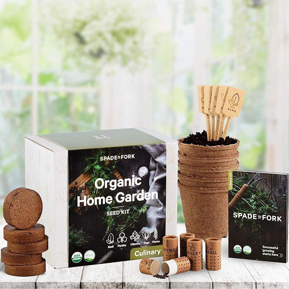 <p>Get this <span>Indoor Herb Garden Starter Kit</span> ($34) for the person with a green thumb.</p>