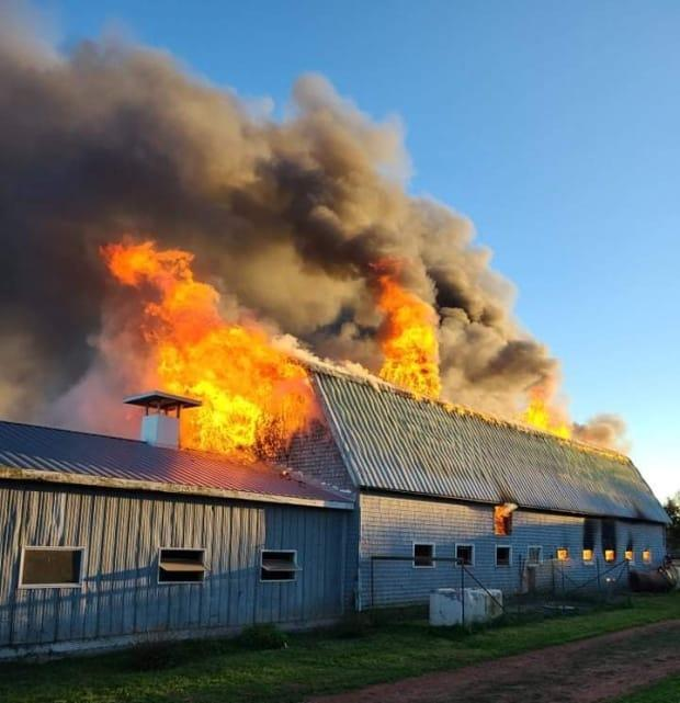 Firefighters were called to the barn fire on the Darlington Road at about 6 p.m. Monday. (North River Fire Department - image credit)
