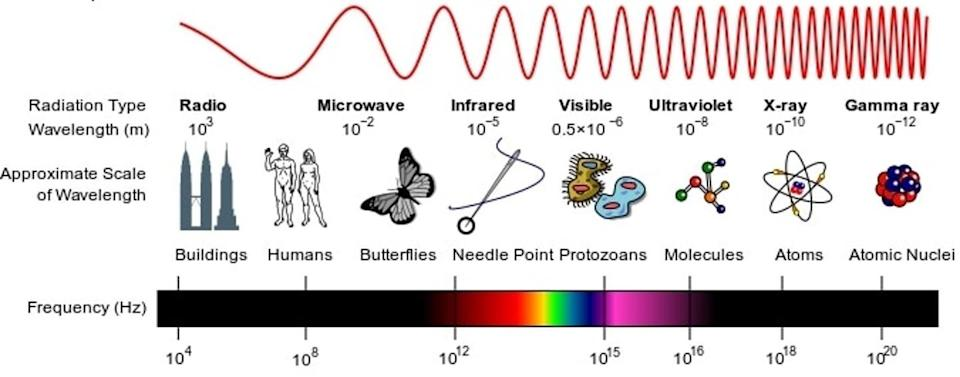 A diagram showing different wavelengths of light compared to size of normal objects.