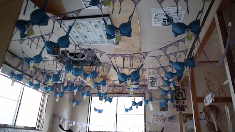 Abandoned Buddhist Temple in Japan Now Turned Into 'Bra Sanctuary'